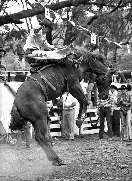 The Australian National Rodeo Championships, Cootamundra, 1964